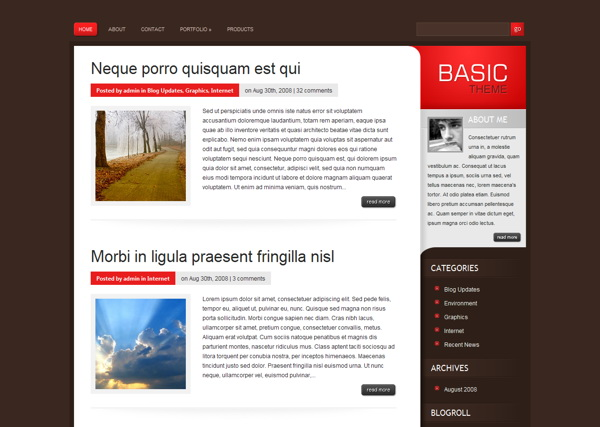 basic-premium-wordpress-theme