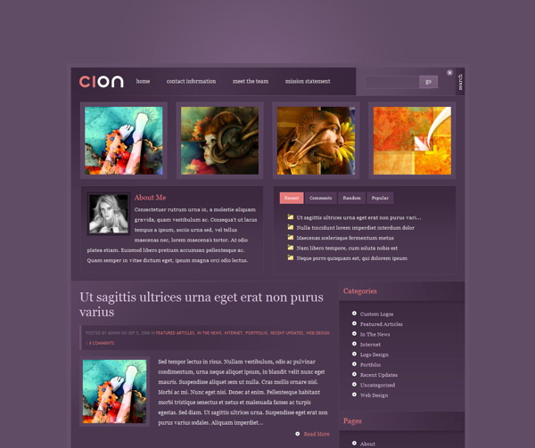 cion-premium-wordpress-theme